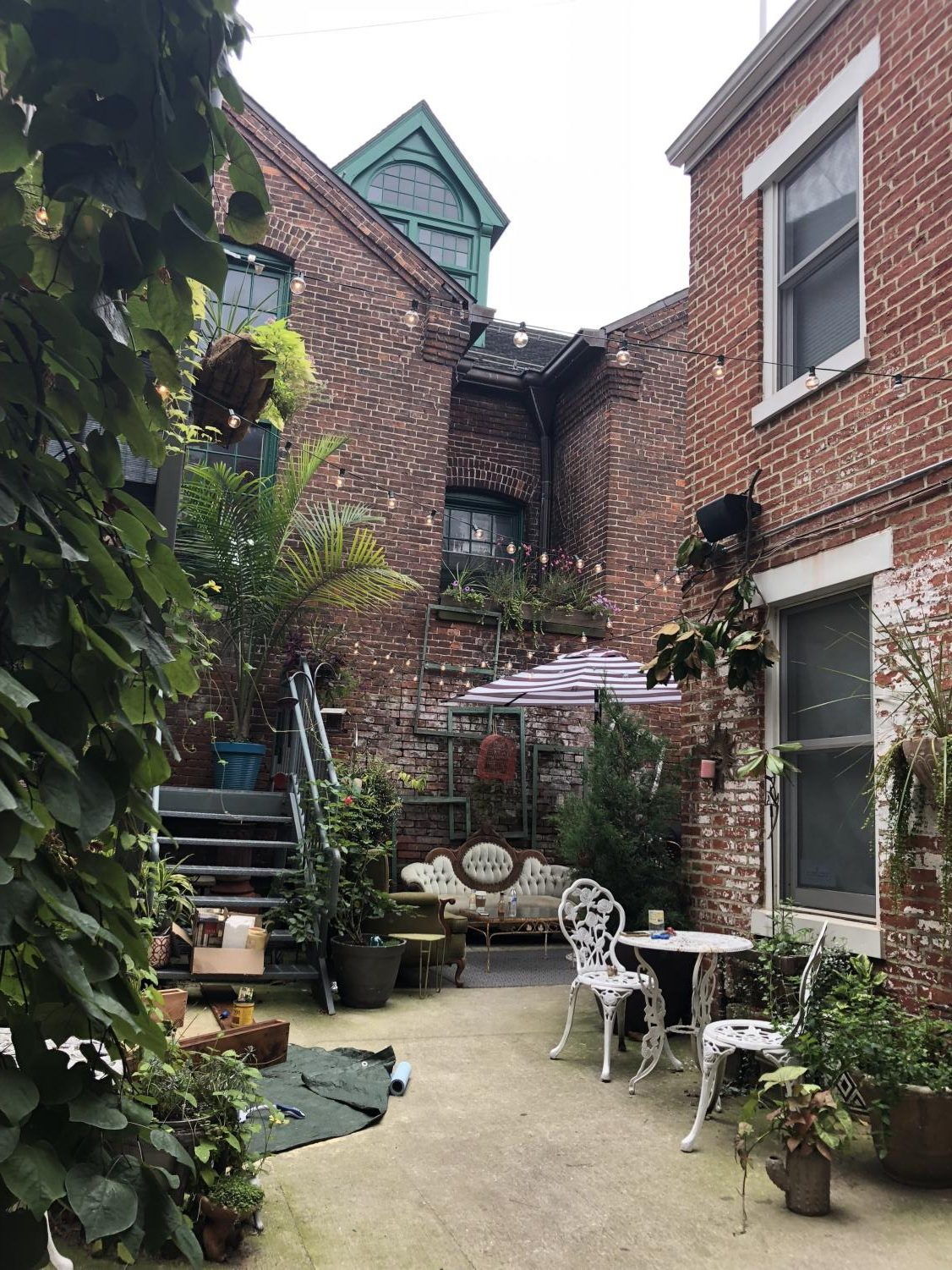 Cherie Anne's courtyard cafe is decorated with plants, vintage sofas, and tables where customers can enjoy a variety of beverages.
