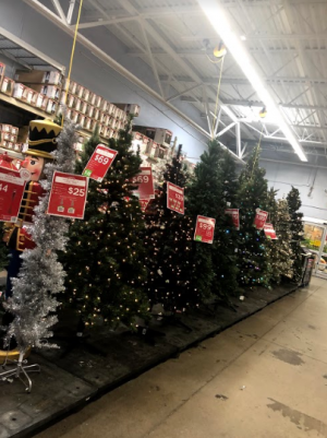 Walmarts Christmas tree display is already out in late Oct.