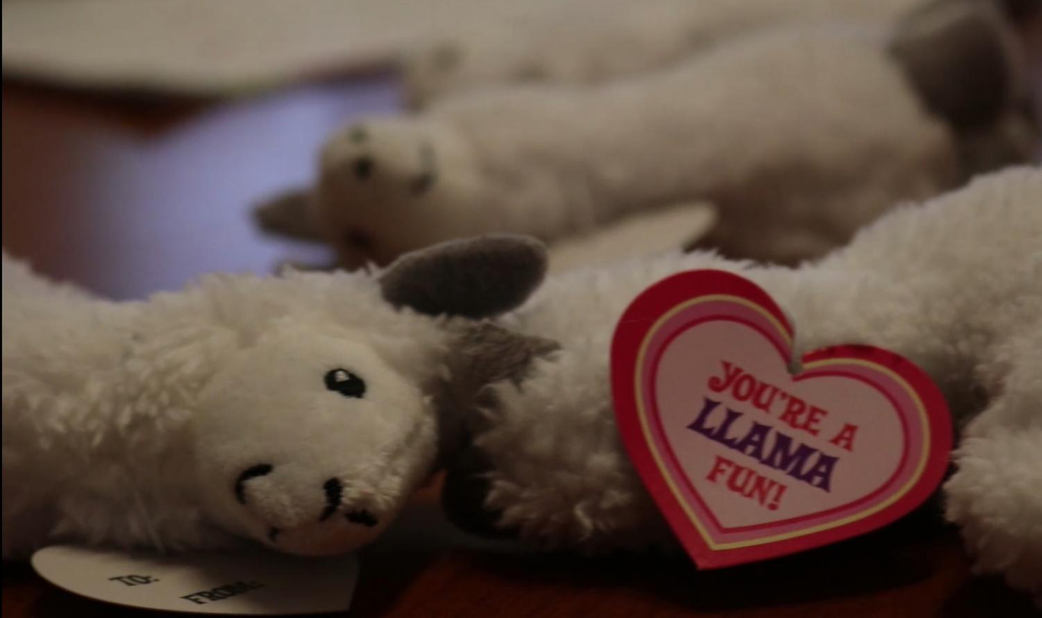 DHS students can purchase one of these llamas for $3 from Senora Pomraning. Proceeds benefit the Spanish Club.
