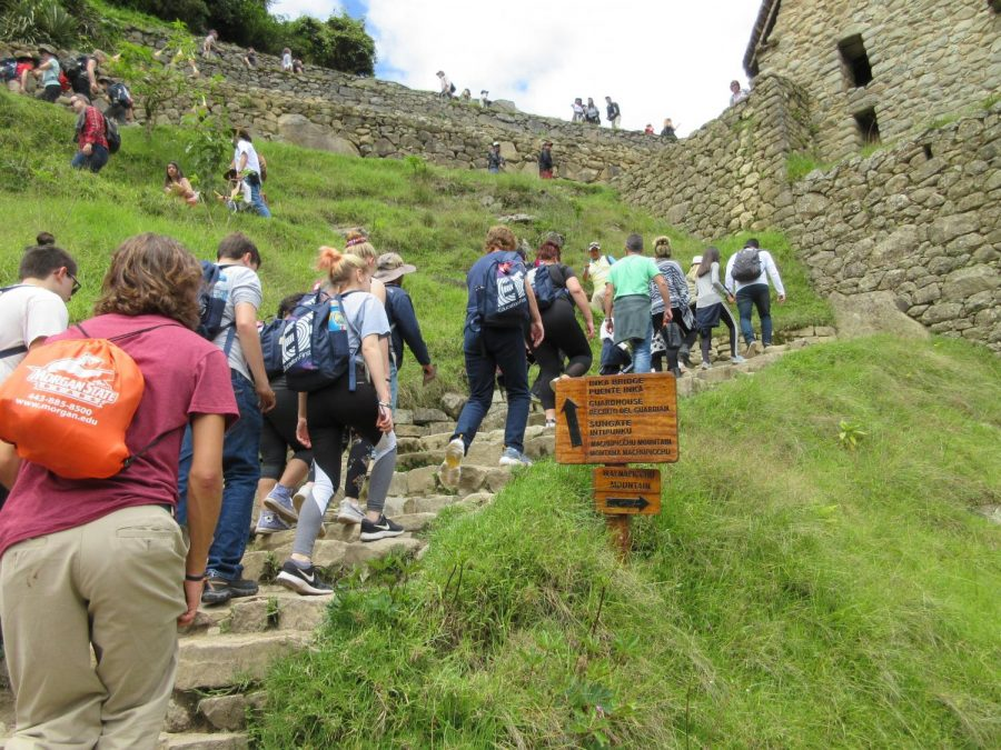 Only after traveling on a train and bus did students make the long uphill trek to the ancient city of Machu Picchu.