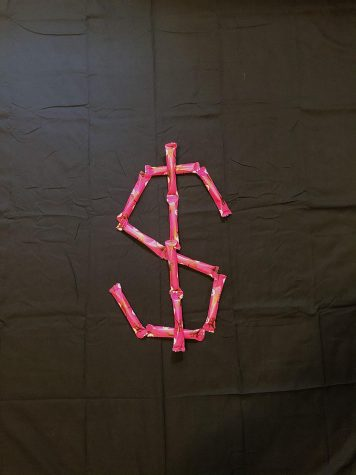 Dollar Sign Made Out of Tampons