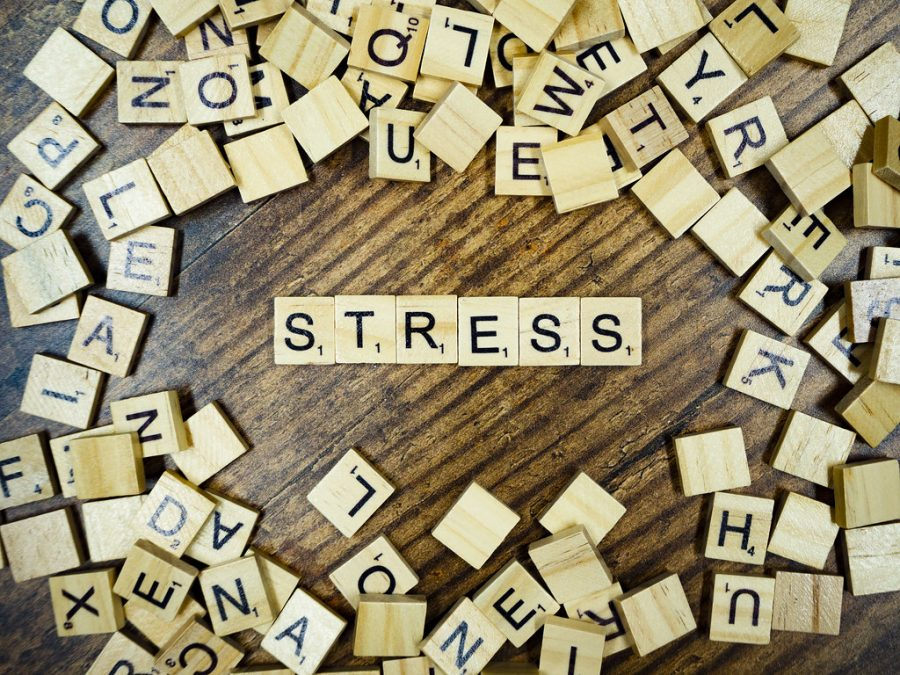 Stress sometimes consumes students and it is important to know how to cope. Dallastown also has a Mental Health Awareness Club that does just as the name implies: raises awareness about mental health.
